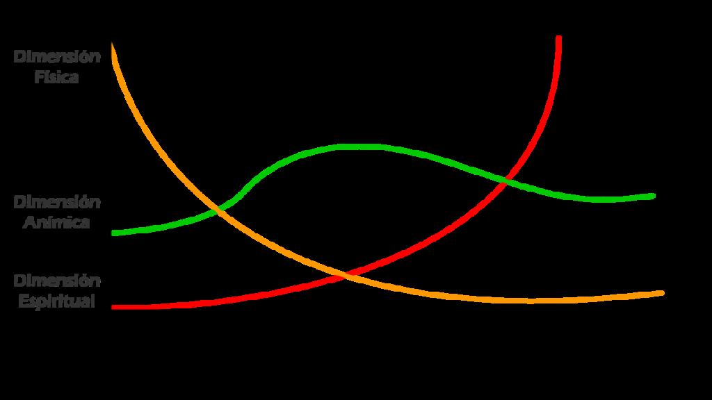 Grafica Antropología MdE 360º